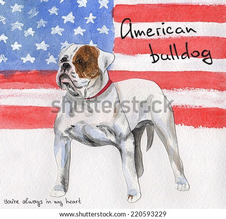 postcard Dogs collage - stock photo