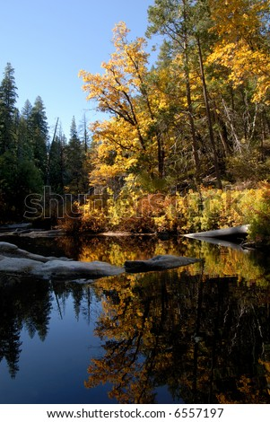 Postcard Scenic of Fall Colors Reflected in Mountain Stream, Sierra Nevada Range, California
