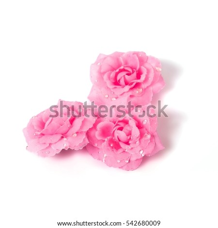 Postcard template with small roses with dew