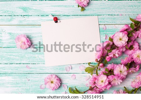 Postcard with empty tag for your text and fresh pink flowers on turquoise painted wooden planks. Selective focus is on tag.