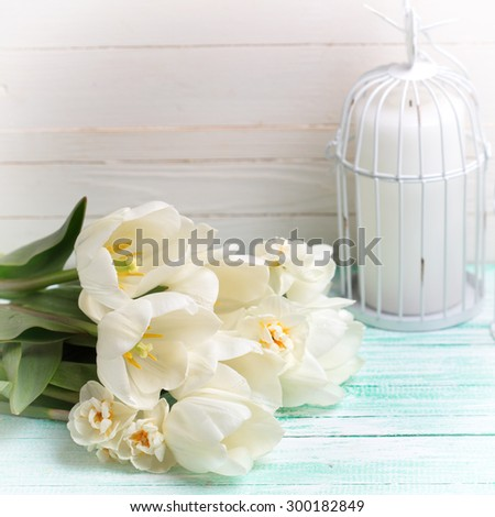 Postcard with fresh spring flowers  tulips and daffodils and candles on turquoise painted planks against white wall. Selective focus. Square image. - stock photo