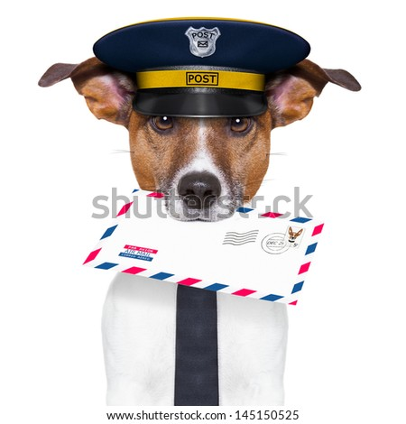 postman mail dog with a air mail letter - stock photo