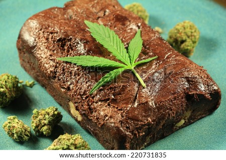 Pot Brownie 7. A marijuana leaf on a marijuana brownie on a blue plate with buds. - stock photo