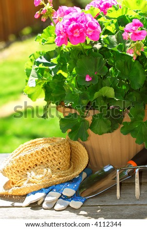 Pot of geraniums flowers with gardening tools - stock photo