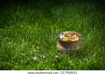 pot with golden coins, green grass background - stock photo