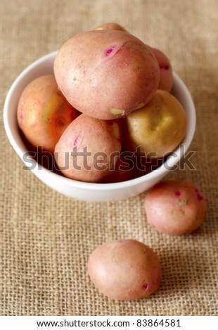 potato - stock photo