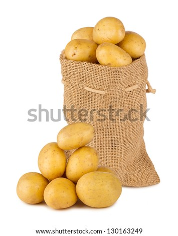 potato bag with fresh potatoes - stock photo