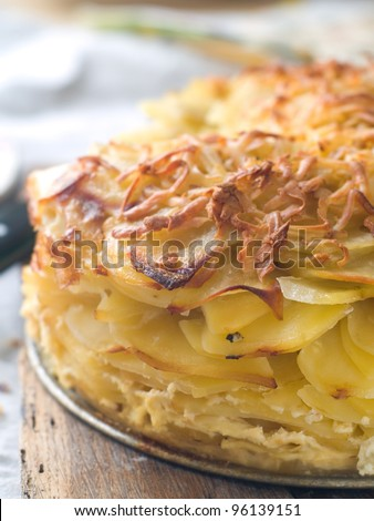 Potato gratin with cheese on plate, selective focus - stock photo