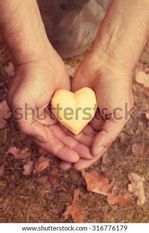 Potato heart in the rough male hands
