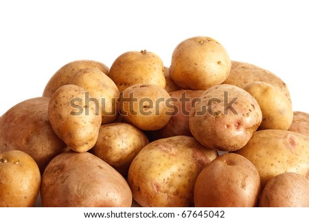 potato isolated on a white background - stock photo