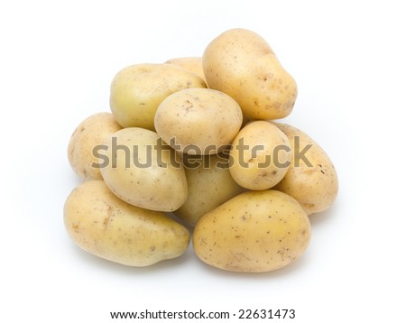 potato isolated on the white background