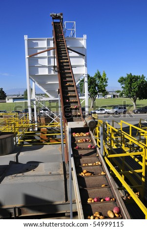 Potato packing plant: Potatoes are conveyed into hopper for loading onto truck - stock photo