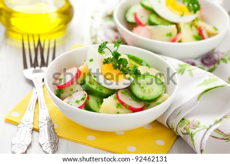 potato salad with egg,radishes and cucumbers - stock photo