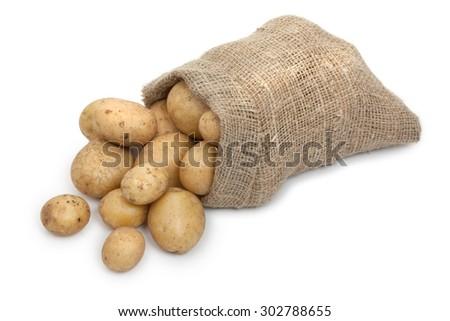 Potato tubers in a sack isolated on white - stock photo