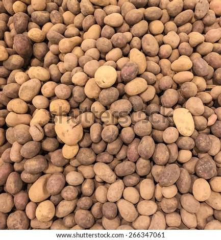 Potatoes background - stock photo