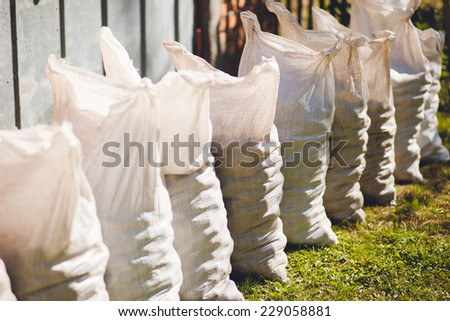 potatoes in bags - stock photo
