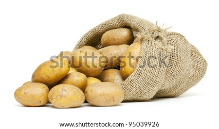 potatoes in burlap bag isolated on white background - stock photo