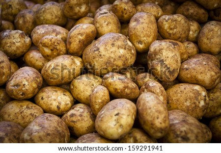 Potatoes on a market stall in Queensland, Australia. Full-frame, Background, Healthy Food - stock photo