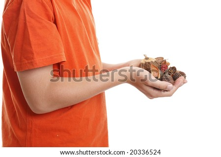 Potpourri is a  scented mixture of dried, naturally fragrant plant materials such as seeds, dried flowers, bark, nuts, leaves and cones. - stock photo