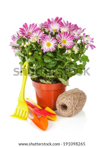 Potted flower and garden utensils. Isolated on white background