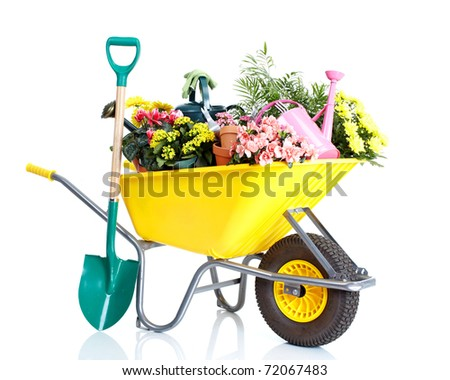 potted flowers and gardening equipment isolated on a white background - stock photo