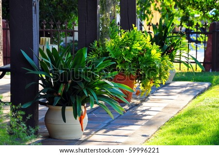 Potted plants on a front porch. - stock photo