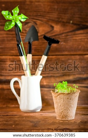 Potted seedlings growing in biodegradable peat moss pot and garden tools - stock photo
