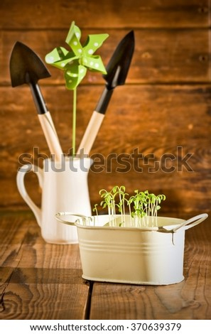 Potted seedlings growing in metal pot and garden tools - stock photo