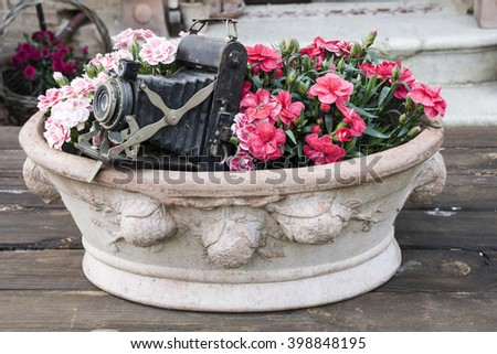 pottery vase with red and white flowers on top of a wooden table with inside an old camera - stock photo