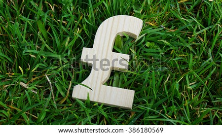 Pound sign of wood isolated on grass background - stock photo