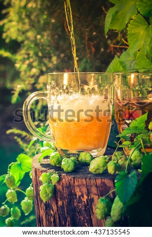 Pouring beer tankard on the background of hop cones - stock photo