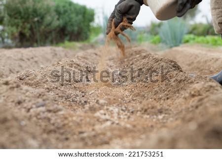 pouring fertilizer - stock photo