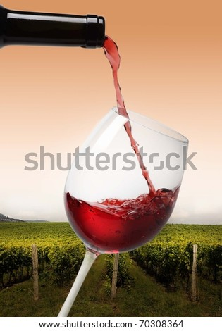 pouring red wine on wineyard - stock photo