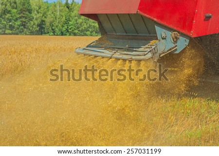 pouring straw of wheat by combine harvester  in time of hravesting - stock photo
