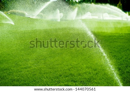 Pouring water of green lawn.design.landscape.Wet grass - stock photo