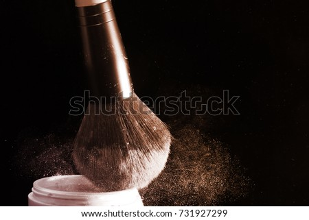 Powder brush / A makeup brush is a tool with bristles used for the application of makeup or face painting