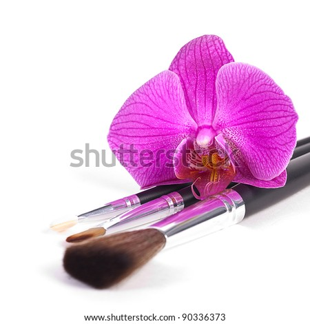 powder brushes  with orchid white background - stock photo