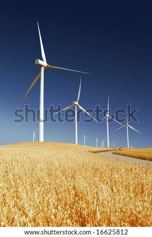 Power generating wind turbines on cultivated oat covered hills, Rio Vista California. - stock photo