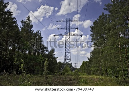 power lines in forest - stock photo