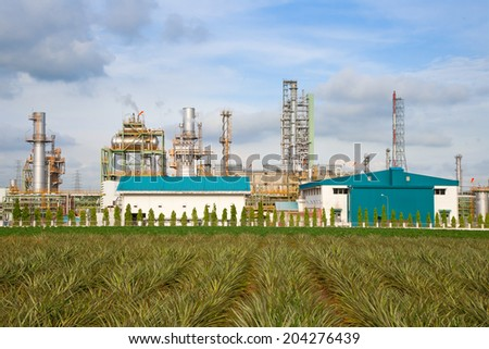 Power plant with a pineapple foreground. - stock photo