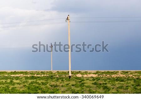 power poles in the desert - stock photo