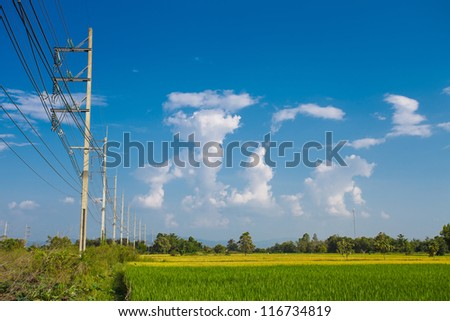 power poles in the field - stock photo