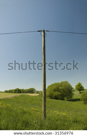 Power poles in the nature