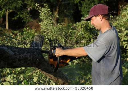 Power sawing in the garden - stock photo