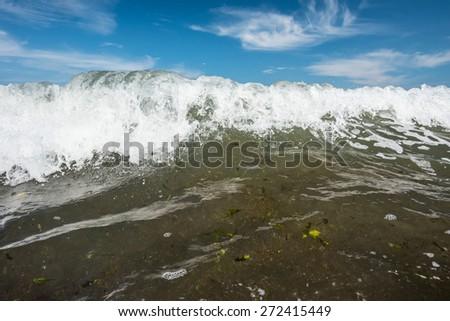 powerful ocean breakers with algae at Atlantic ocean - stock photo