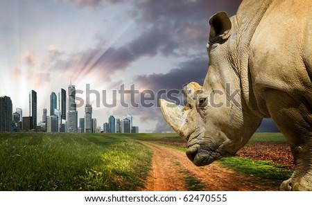 Powerful rhino at sunset. Nature against progress - stock photo
