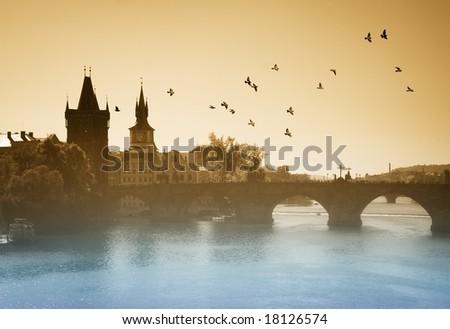 Prague birds. Charles bridge. - stock photo