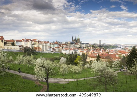 Prague Castle - St. Vitus Cathedral with Blue Sky and Trees. The Capital City of Czech Republic.