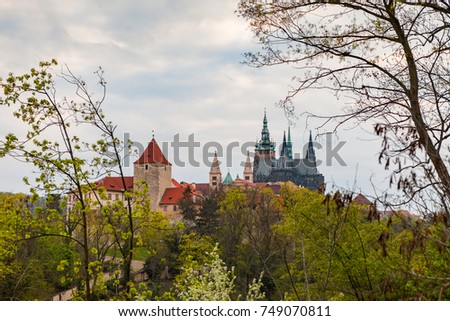 Prague Castle with the cathedral of St. Vitus on the hill with a beutiful frame of branches and trees at the foreground. Spring time.