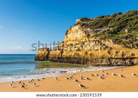 Praia do Carvalho beach in Benagil, Algarve, Portugal, Europe